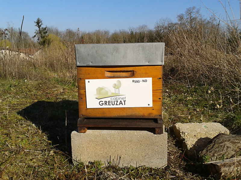 861-ruche-cabinet-greuzat_1_2014-03-21_09-15-51